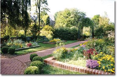 Shakespeare Garden in bloom