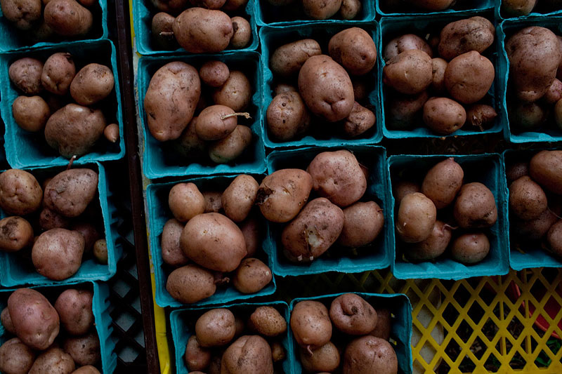 """A grid of """"fresh-dug"""" potatoes laid out for CSA members. Stoney Lonesome also produces string beans, squash, zucchini, tomatoes, cucumbers, red onions, fennel …"""
