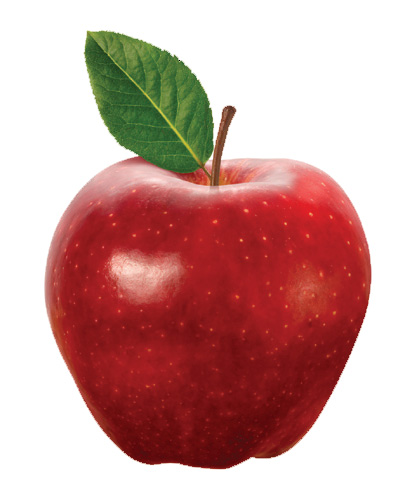 the apples Apples, like honeycrisp, cameo, cortland, empire, fuji, gala, golden, jonagold, mcintosh, macoun, mutsu, red delicious, apples, delivered fresh to your door.