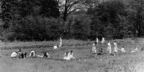 Students working in the Ecological Lab in the early 1930s
